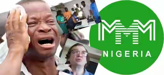 7 Reasons Why MMM Nigeria Is Not Coming Back (Must Read)