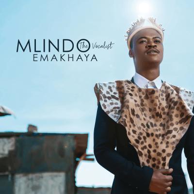 DOWNLOAD: NPK Twice – Egoli (mp3)