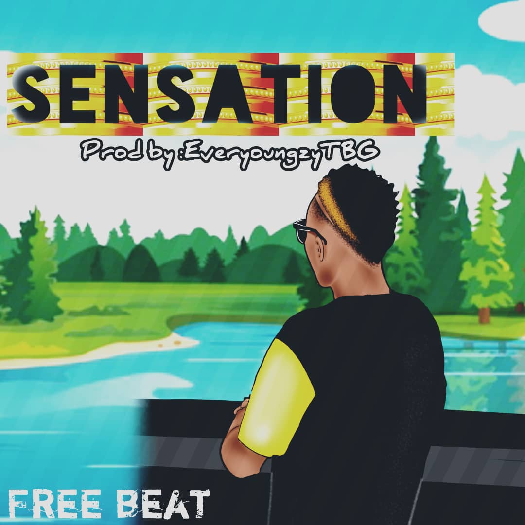 Download Afro Pop Instrumental 2019: Sensation (Beat By