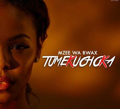 DOWNLOAD: Mzee Wa Bwax – Tumekuchoka (mp3)