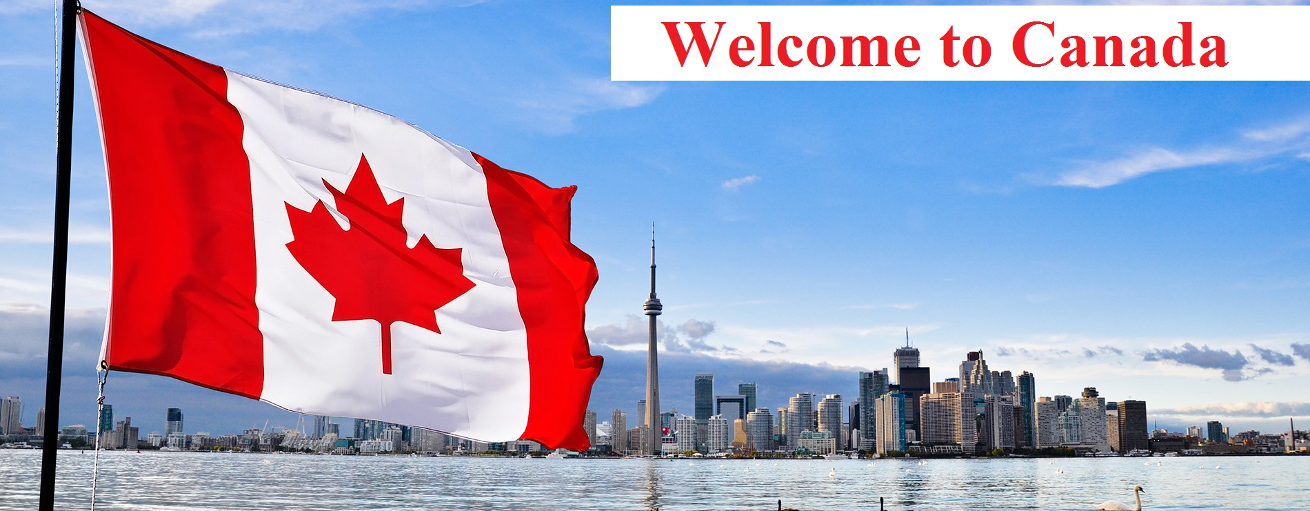 Learn How To Apply For Canada Student Visa