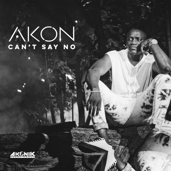 Davido & Wizkid Are Richer Than Most Of The Hip-Hop Artistes In America – Akon reveals | Video