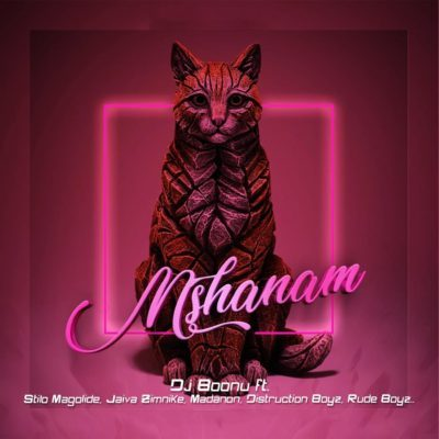 DOWNLOAD: DJ Boonu Ft. Distruction Boyz, Madanon, Rude Boyz, Stilo Magolide & Jaiva Zimnike – Mshanam (mp3)