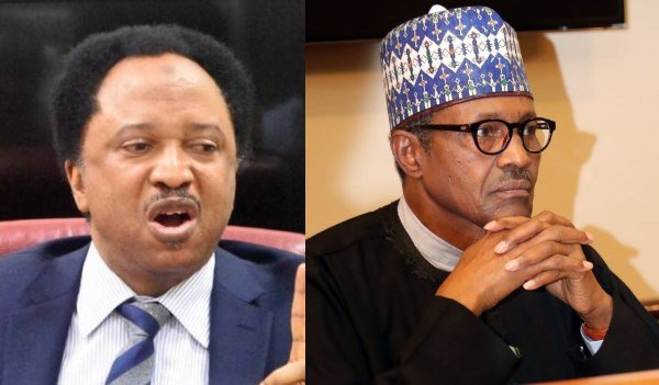 Saraki-led senate rejected the bn loan request Buhari resubmitted to save Nigeria from recolonisation – Shehu Sani