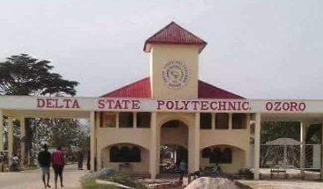 Indecent dressing: Delta Polytechnic burns 5,000 face caps seized from students, bans use on campus