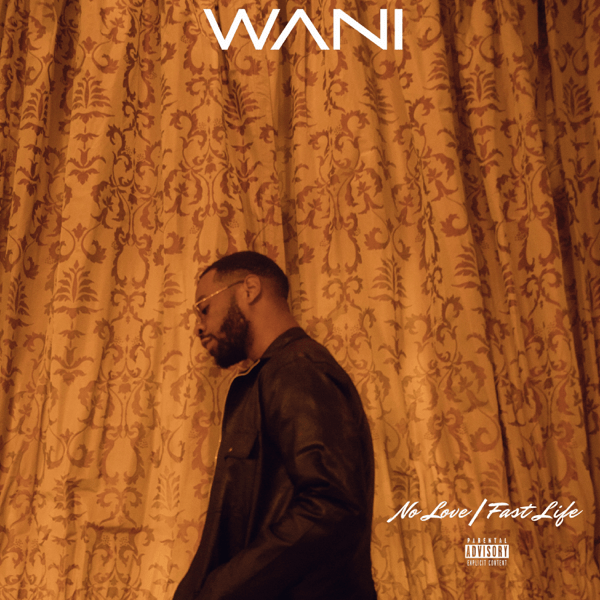 DOWNLOAD: WANI Ft. PrettyboyDo – No Love (mp3)