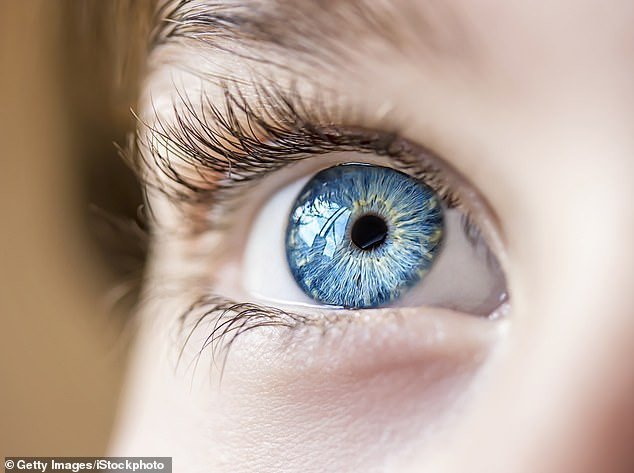 Killer coronavirus could be spread through the eyes: Chinese doctor says as he fears he may have caught the infection by not wearing protective goggles