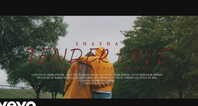 VIDEO: Sha Sha Ft. Kabza De Small, Maphorisa – Tender Love | mp4 Download