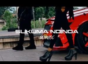 DOWNLOAD: Rosa Ree Ft. Rayvanny – Sukuma Ndinga (Remix) mp3