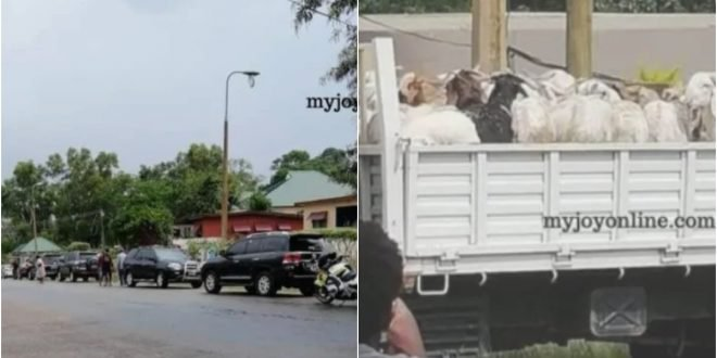 Queen Mother rejects 62 sheep from Akuffo Addo to settle a Dispute.