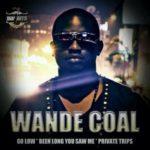 DOWNLOAD Wande Coal – Go Low MP3