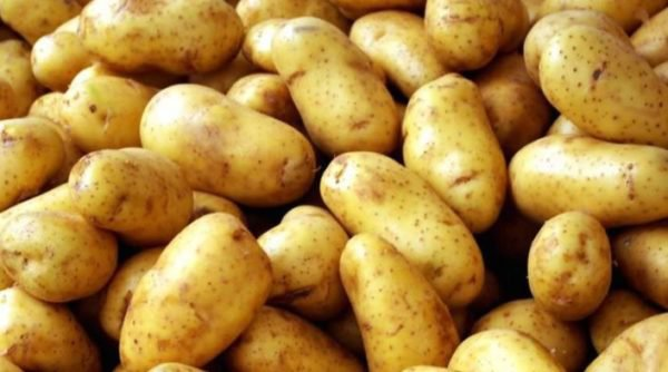 5 reasons why Irish potatoes are good for your health