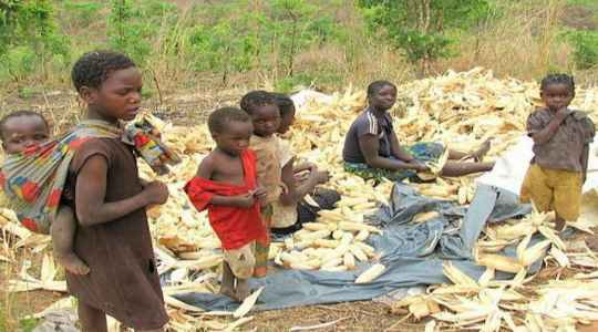See This Tribe In Zambia Where The Bride's Family Must Feed The Groom With Assorted Meals! See WHY!!