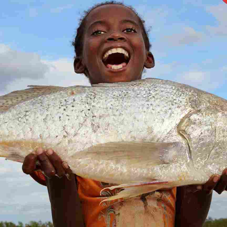 MONEY SPEAKING! See Nigeria's Argungu Fishing Festival Where Winners Go Home With Over N10m & Brand New Cars