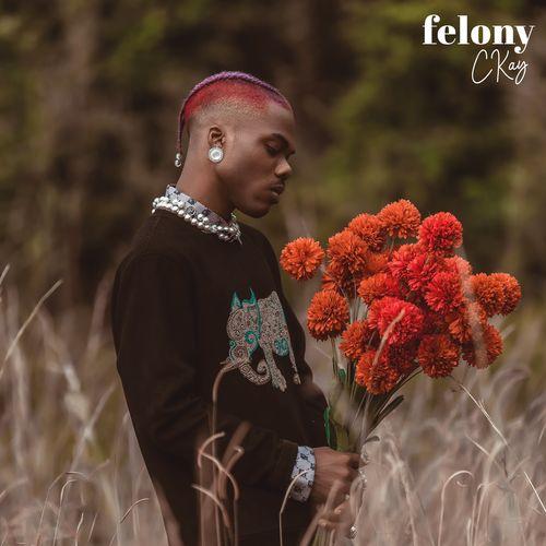 DOWNLOAD Ckay – Felony MP3