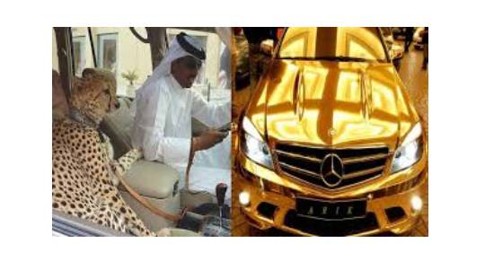 EXPOSED!!! Crazy & Hilarious Things That You'll Only See In Dubai