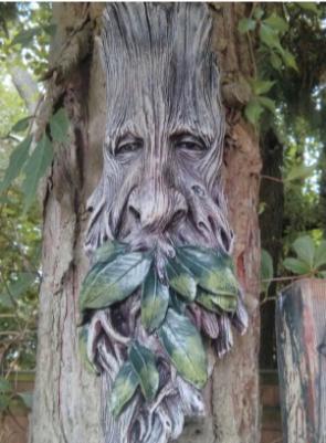 STRANGE BUT TRUE: MPENI KOFI, The 300-Year-Old Tree That Turns Human At Night