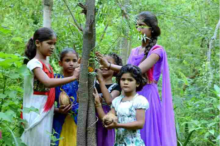 See This Amazing Village Who Plants 111 Trees Every Time A Little Girl Is Born