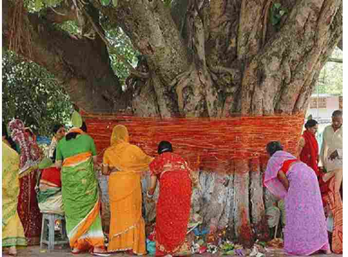 STRANGE!!! Did You Know This Country Marry Their Daughters To Trees For Superficial Reasons?
