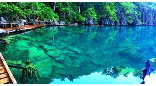 Glimpse The See-Through Lake In Palawan | You Can See The Bottom Without Getting Into The Water