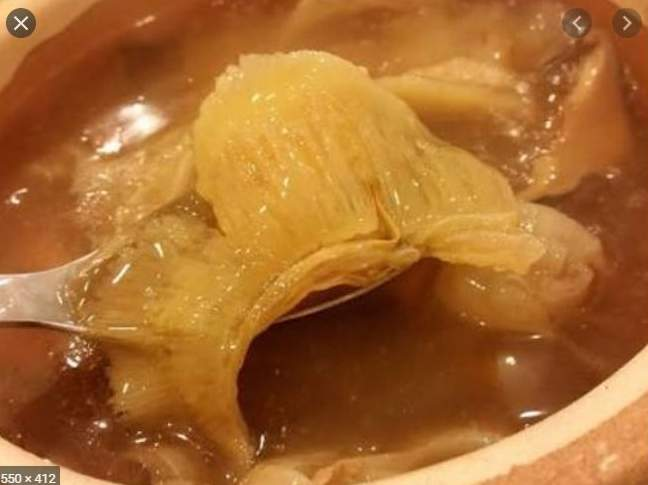 SHARK FIN SOUP??? You Will Be Shocked To Find Out The Mystery Behind This Soup – See For Yourself
