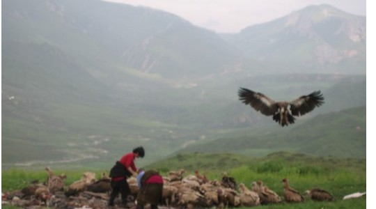 SKY BURIAL   Strange Tibet & Mongolia Funeral Practise That 'll Leave You In Shock! 😨