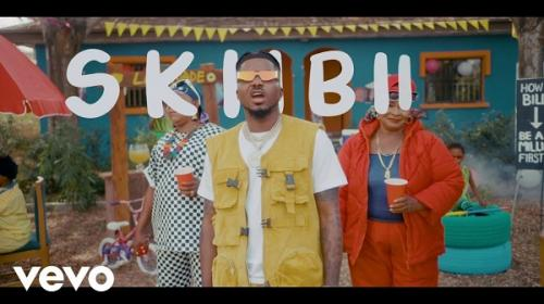 VIDEO: Skiibii – Are You Vhere | mp4 Download