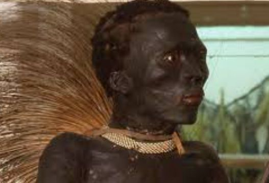 Sad Story Of How An African Warrior's Dead Body Was Paraded As Wild Animal In Europe