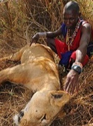To Be A Man Is Not Easy! See This Tribe Where Boys Must Kill A Dangerous Lion In Order To Join The Men's Club 🤯