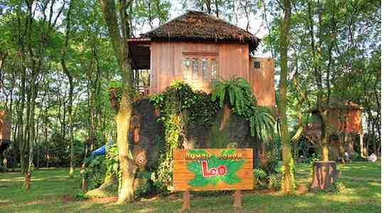 Live Your Dream! See Adorable Real Tree Houses In Bali You Can Stay In