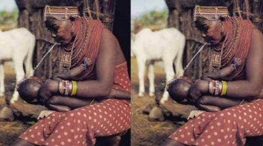 Maasai Tribe's tradition Of Spitting At Each Other As A Show Of Respect And Greeting