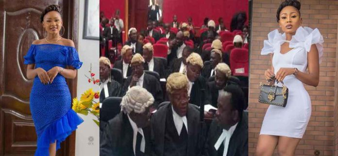 Reasons why Akuapem Poloo was sentenced to 90-days imprisonment