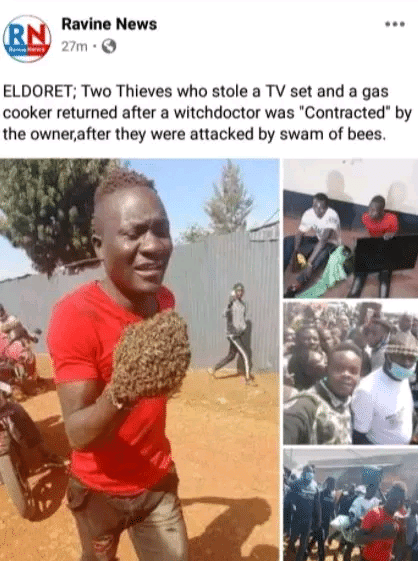 Thieves return stolen items after they were attacked by a swarm of bees