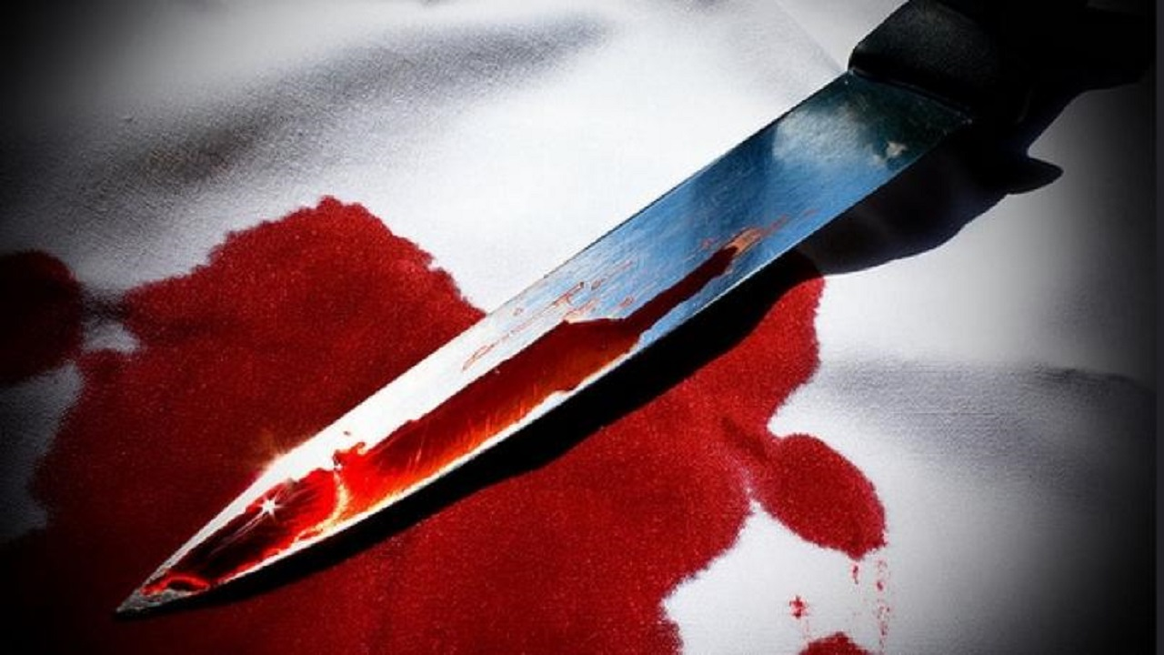 Lady stabs boyfriend to death over meal