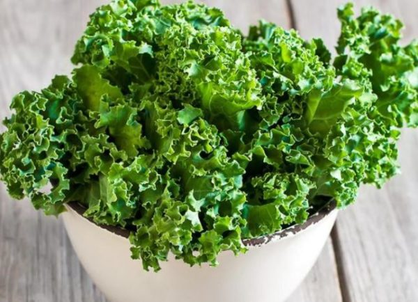 Top 8 vegetables with good source of protein